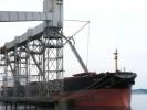 T86 Grain Dock 3