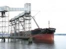 T86 Grain Dock 1
